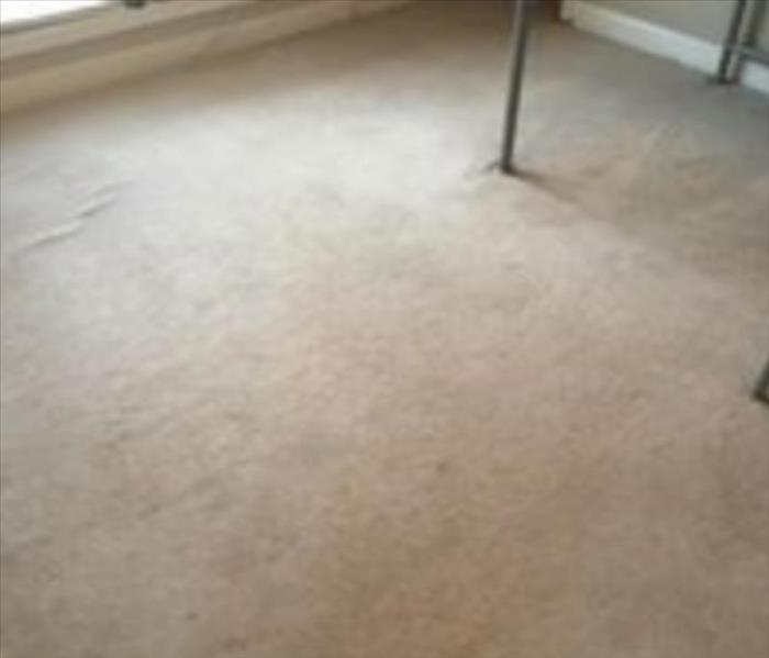 Carpet Cleaning In Harris County, Georgia After